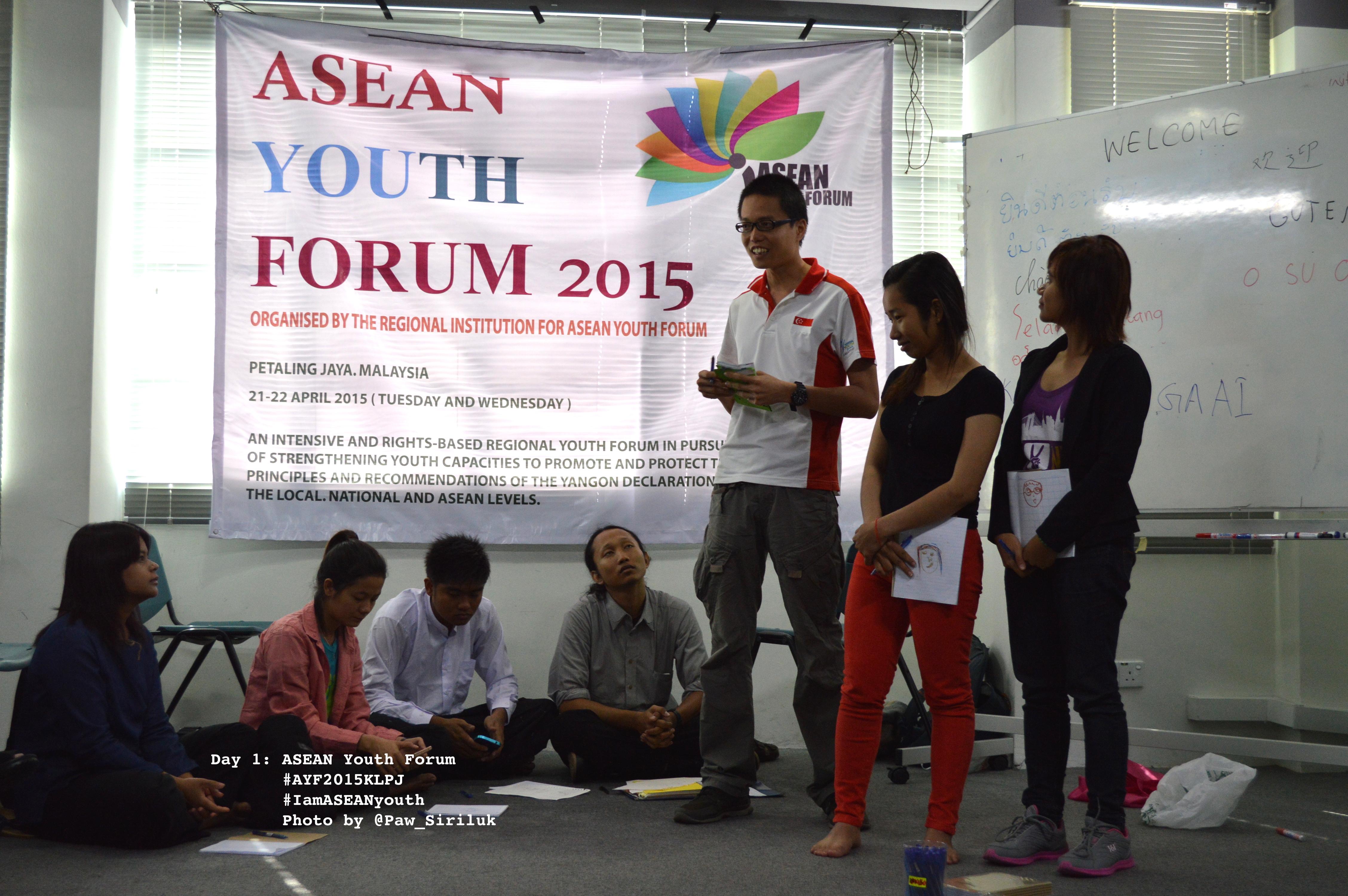 AYF 2015